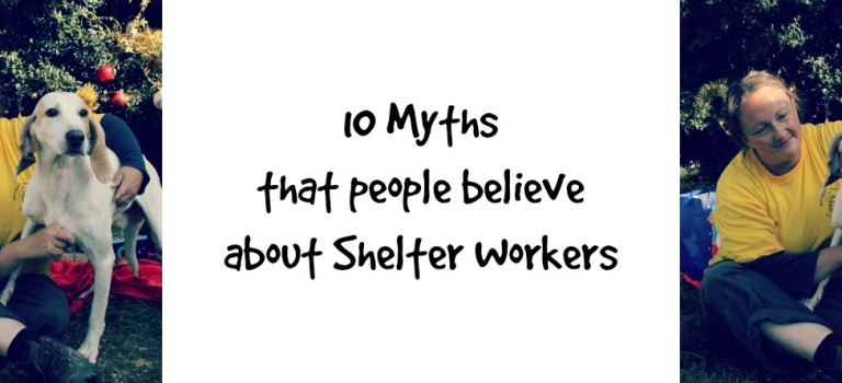 10 Myths that people believe about shelter workers