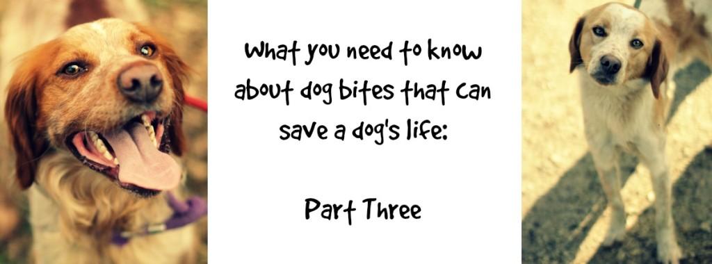 FBnotedogbite3