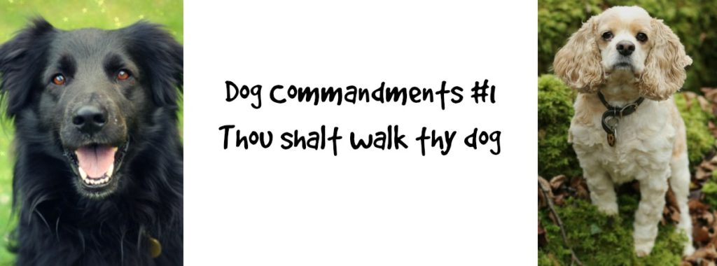 dogcommandments1
