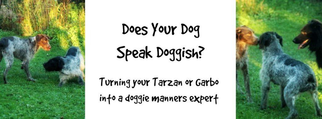 doggish