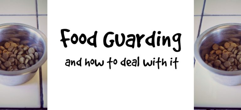 Food guarding and how to deal with it