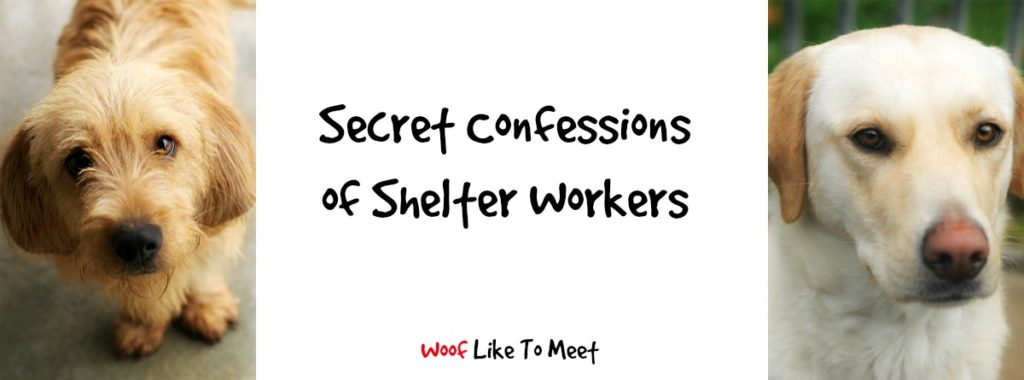 secretconfessions