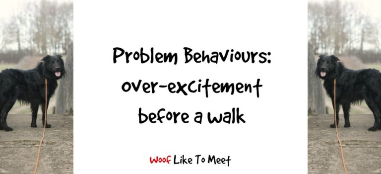 Problem behaviours: over-excitement before a walk