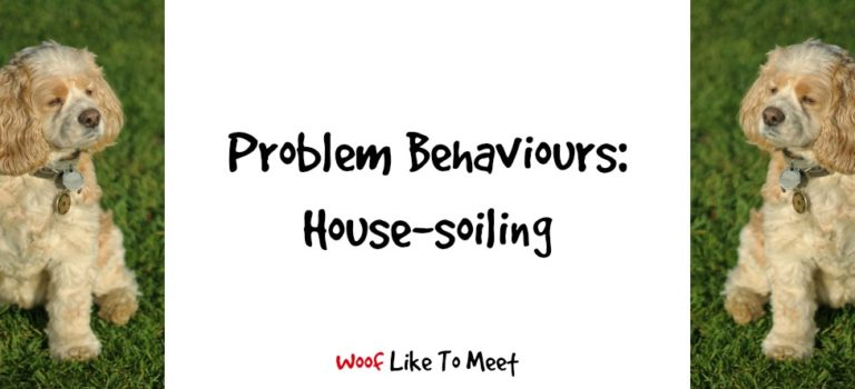 Problem behaviours: house-soiling