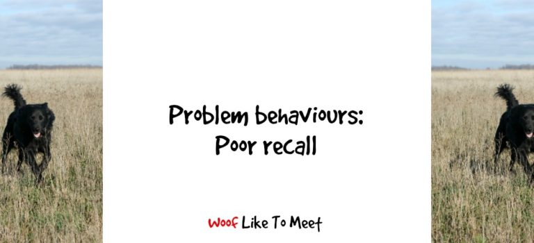 Problem behaviours: poor recall