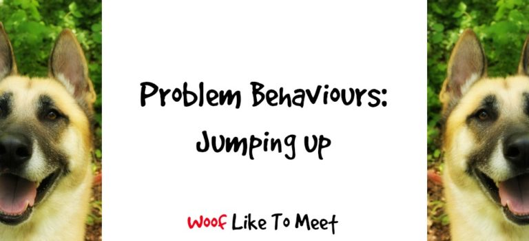 Problem Behaviours: Jumping Up