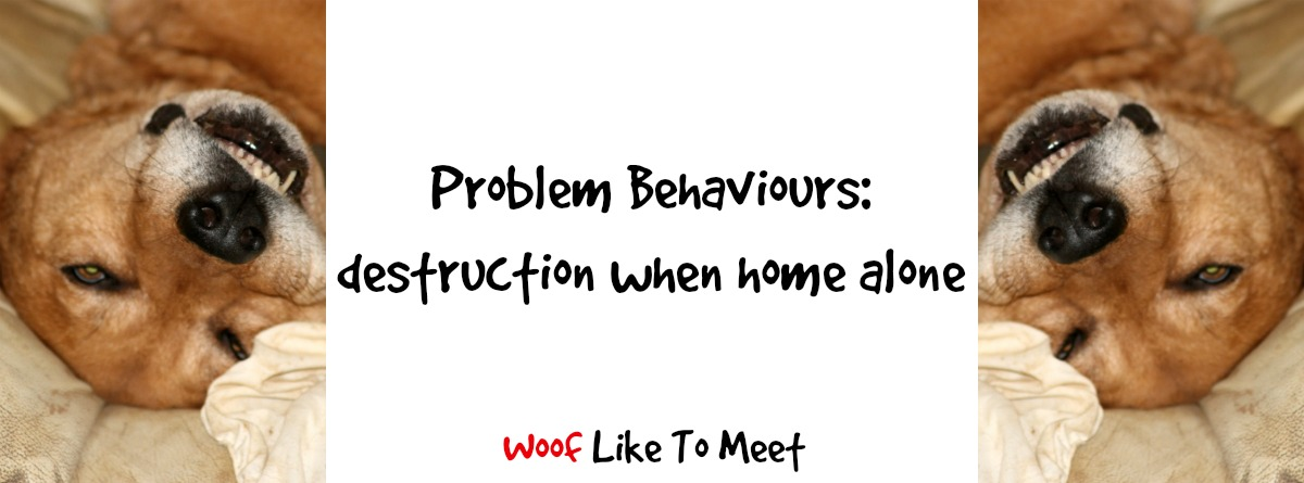 Problem Behaviours – Woof Like To Meet
