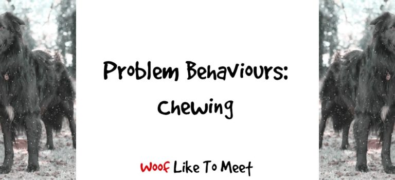 Problem Behaviours: Chewing