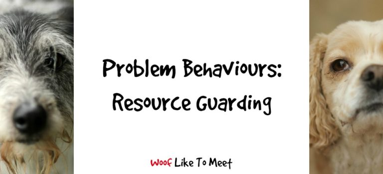 Problem Behaviours: Resource Guarding