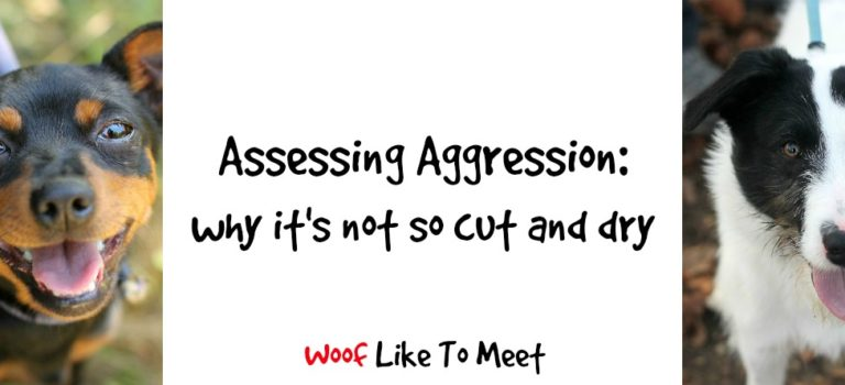 Assessing aggression: why it's not so cut and dry