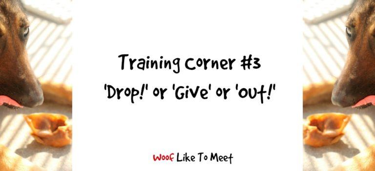 Training Corner #3: Drop, Give or Out