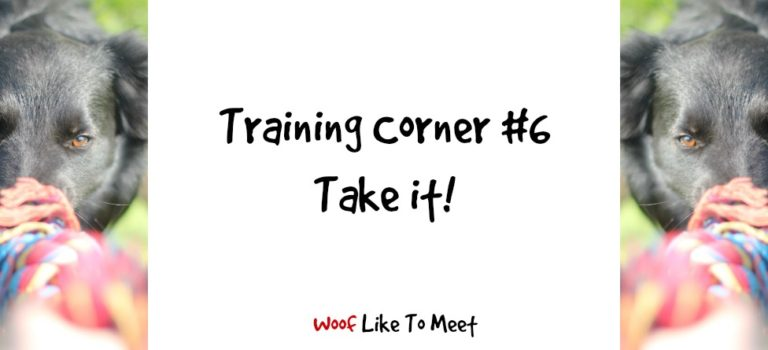 Training Corner #6 Take it!