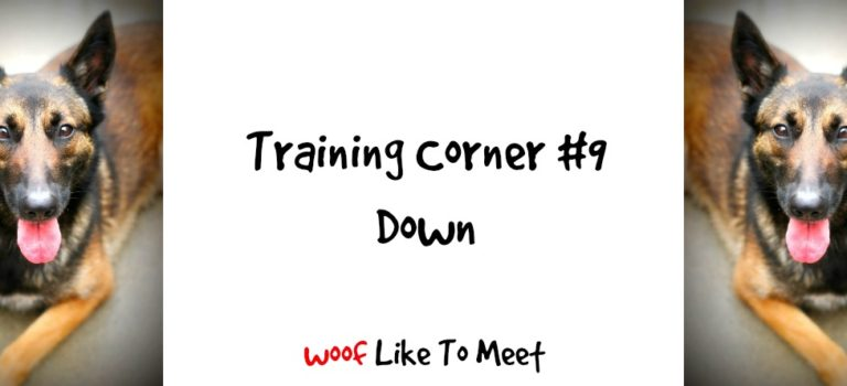 Training Corner #9 Down