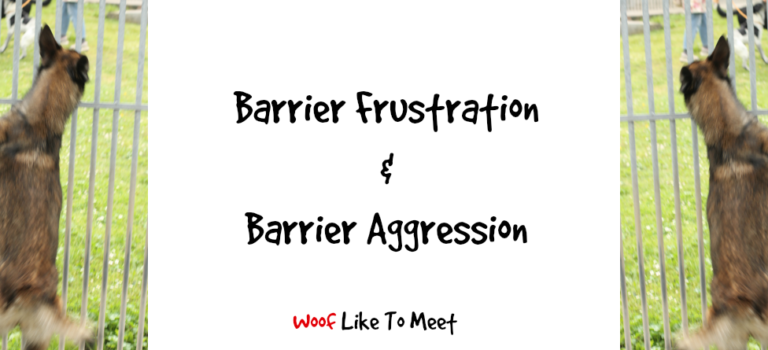 Barrier Frustration and Barrier Aggression